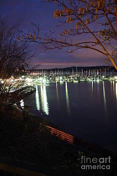 Vicki Maheu - Liberty Bay at Night