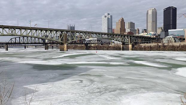 Liberty Bridge  by Joyce  Wasser