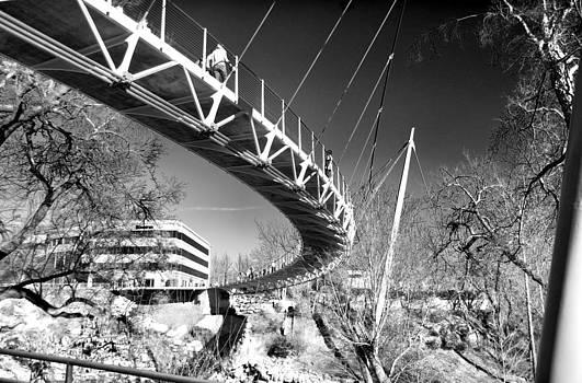 Liberty Bridge by Thomas Taylor
