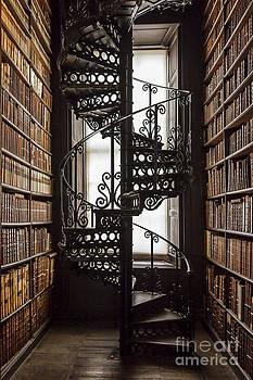 Svetlana Sewell - Library
