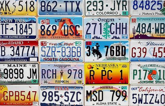 Sophie Vigneault - licence plates