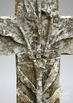 Lichen Cross Original by Josephine Cohn