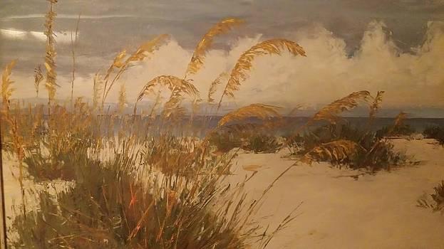 Lido Beach by Ronald Kopko