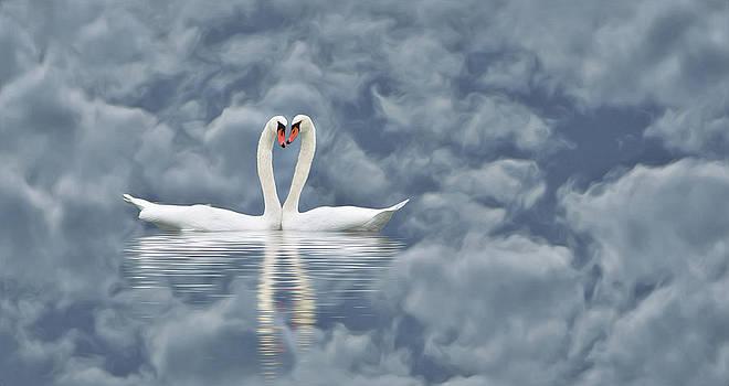 Liebe by Barbelotta