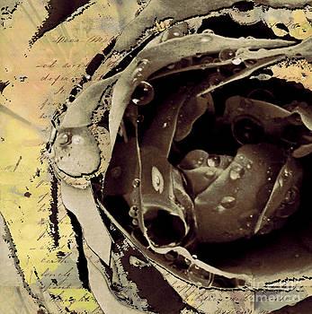 Life III by Yanni Theodorou