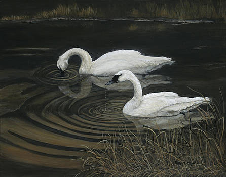 LIFE MATES-Trumpeter Swans by Patricia Mansell