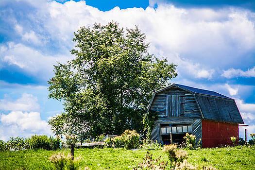 Life on the Farm by Jason Brow