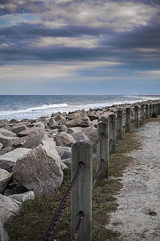 Life on the Rocks by Chris Brehmer Photography