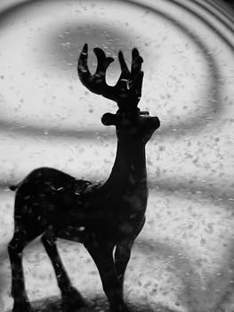 Gilbert Photography And Art - Life On The Snowy Side