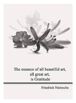 Life Quotes - F.Nietzsche by Trilby Cole