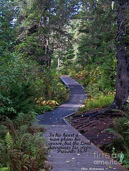 Life's Pathways by Chris Heitstuman