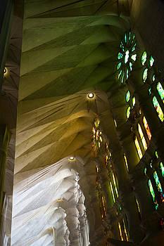 Lorraine Devon Wilke - Light and Color of the Sagrada Familia