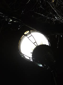 Anastasia Konn - Light at night