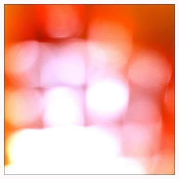 Michelle Calkins - Light Field