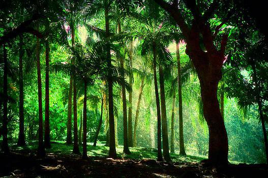 Jenny Rainbow - Light in the Jungles. Viridian Greens. Mauritius