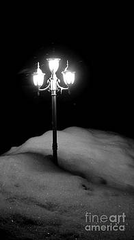 Light my Way  by Sarah Mullin