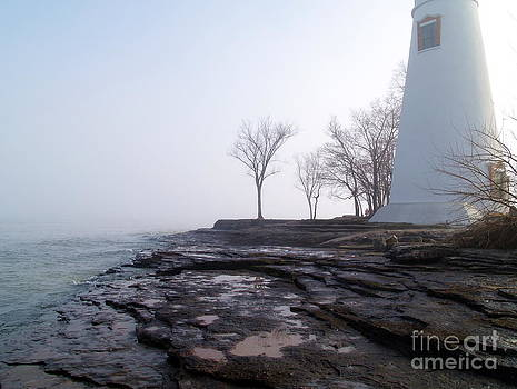 Light on Erie by Melissa McDole