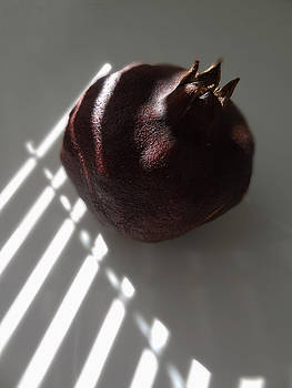 Light On Pomegranate by Eileen Shahbazian