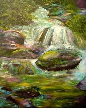 Light Playing on the Falls by Barbara Pirkle