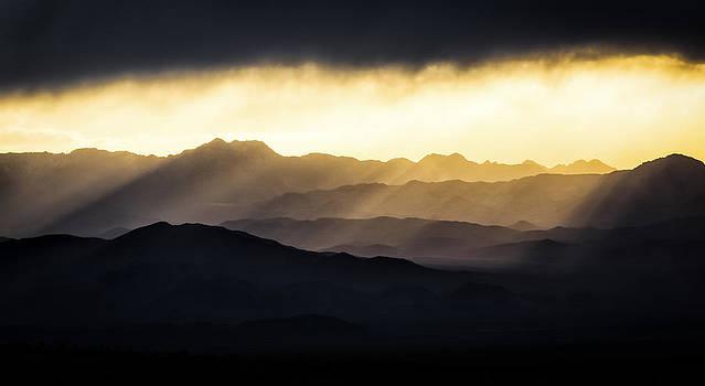 Light Shines In by Brian Bonham