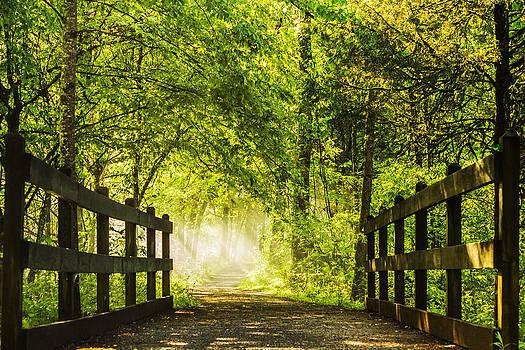 Light the Way by Jonathan Grim
