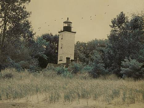 Gothicrow Images - Erie Lighthouse Among The Trees