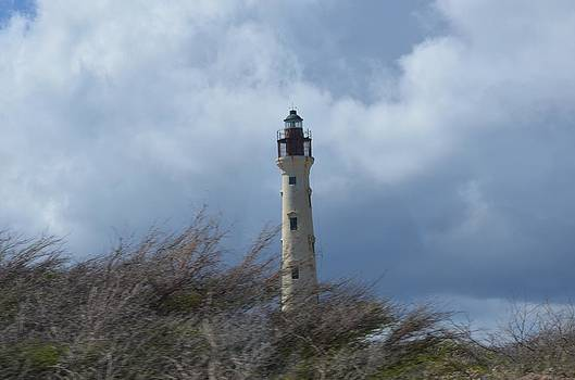 Lighthouse by Chandra Wesson