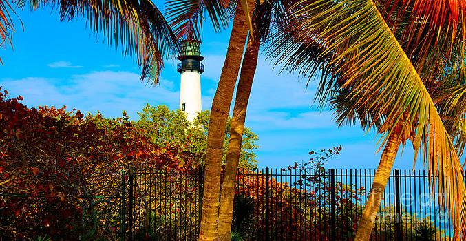 Lighthouse by Dan Hilsenrath
