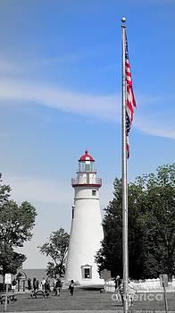 Lighthouse Flag Lake Erie by Jackie Bodnar