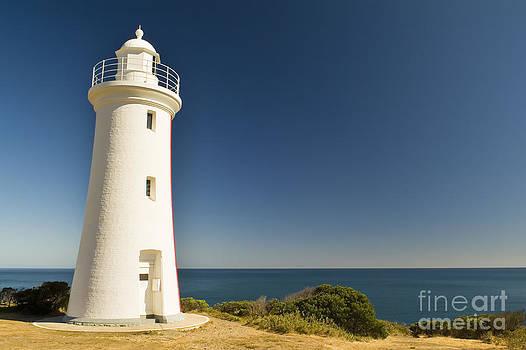 Tim Hester - Lighthouse