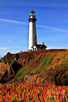 Charles Lupica - Lighthouse with Red Blooms