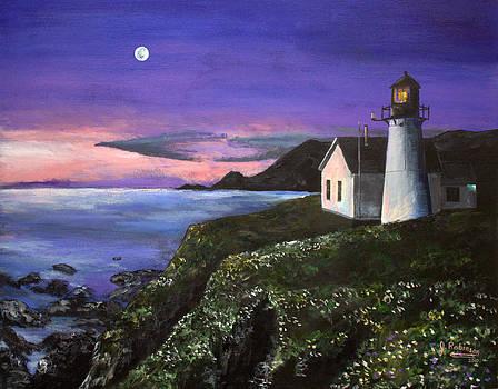 Lighting the Way by Julia Robinson