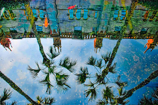Lightner Museum Koi Pond Reflection by Stacey Sather