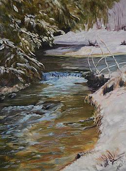 Lightning Creek  by Marlene Petersen