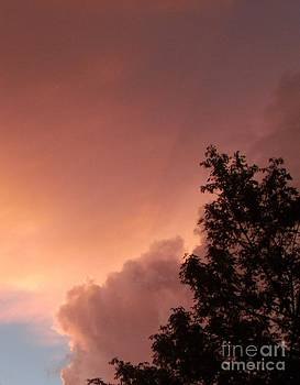 Gail Matthews - Lightning Storm