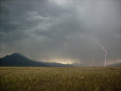 Lightning Strike in Paradise by Misty Ann Brewer
