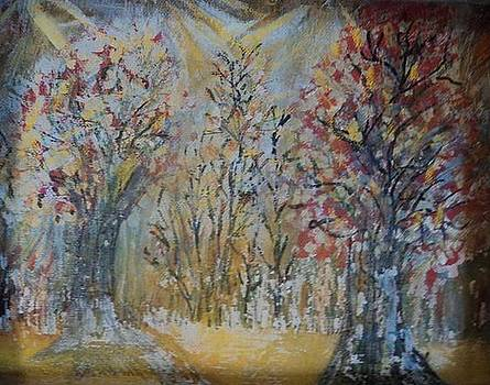 Anne-Elizabeth Whiteway - Lights in the Forest