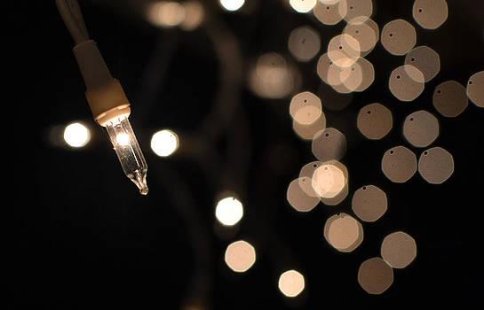 Lights by Matt Stern