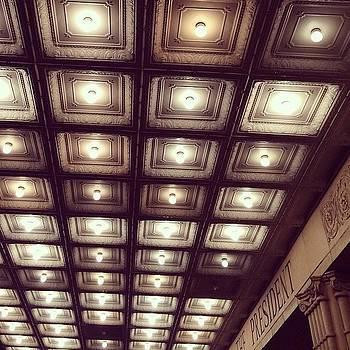 #lightslightslights by Elaine Ismert
