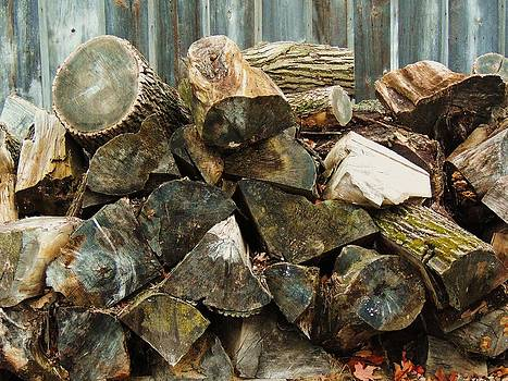 Winter Wood by Todd Sherlock