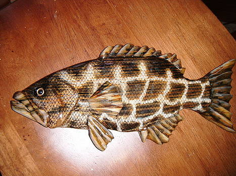 Lil Grouper number three by Lisa Ruggiero