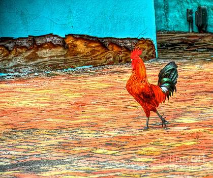 Lil Red Rooster by Debbi Granruth
