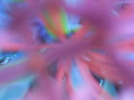 Lilac Inside by Alexandra Masson