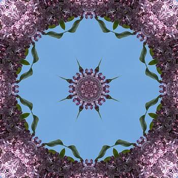 Valerie Kirkwood - Lilac Kaleidoscope