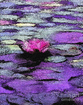 Lilac Lily Pond by Kat Solinsky