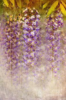 Svetlana Sewell - Lilac Painting