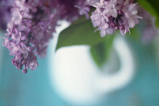 Lilacs by Beverly  LeFevre