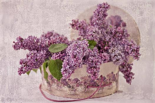 Sandra Foster - Lilacs In The Box