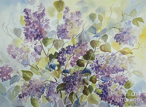 Lilacs by Paula Marsh