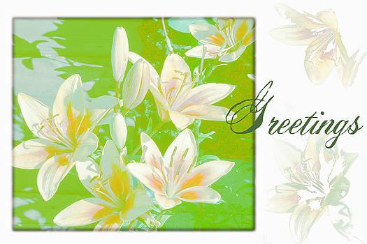 Sandra Foster - Lilies Greeting Card